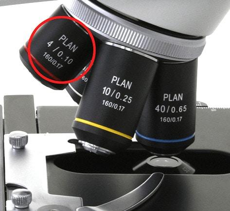 Aumentos del microscopio
