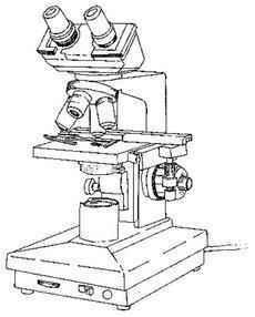 binocular dibujo
